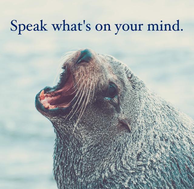 Speak what's on your mind.