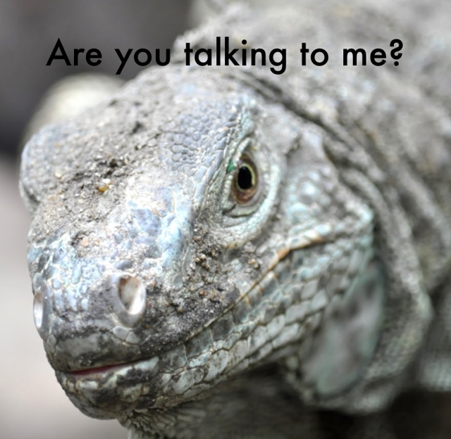Are you talking to me?