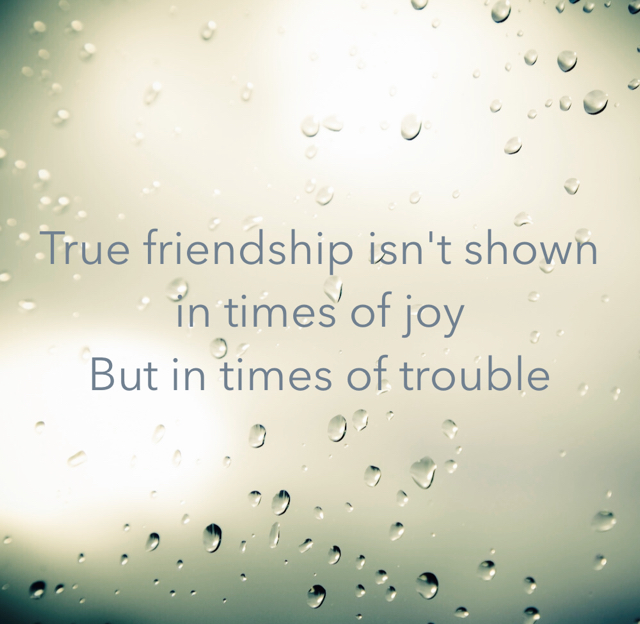True friendship isn't shown in times of joy But in times of trouble
