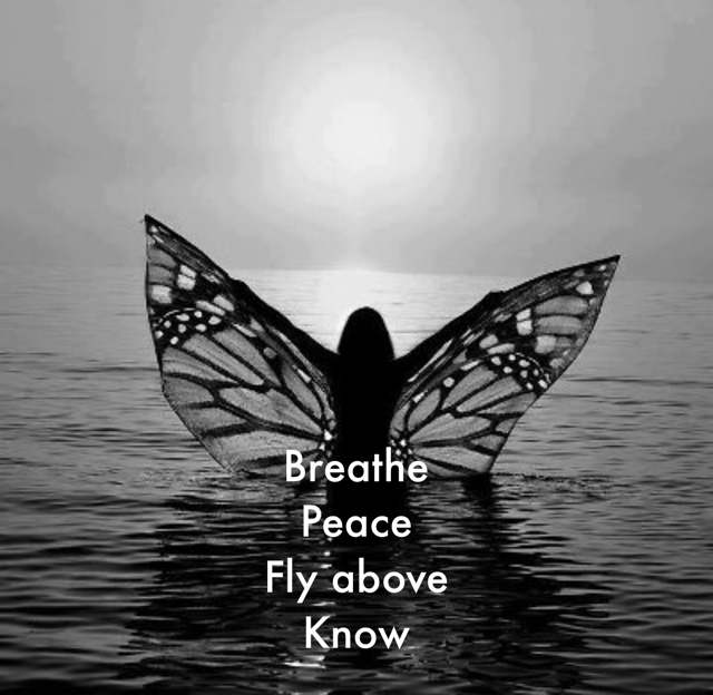 Breathe Peace Fly above  Know
