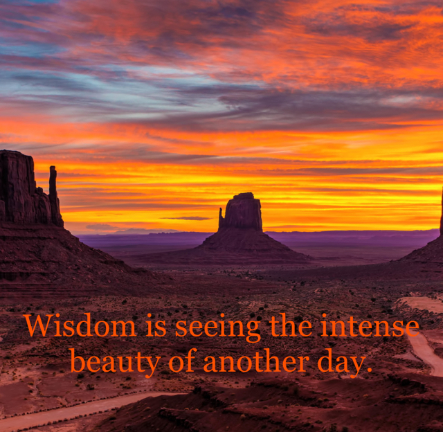 Wisdom is seeing the intense beauty of another day.