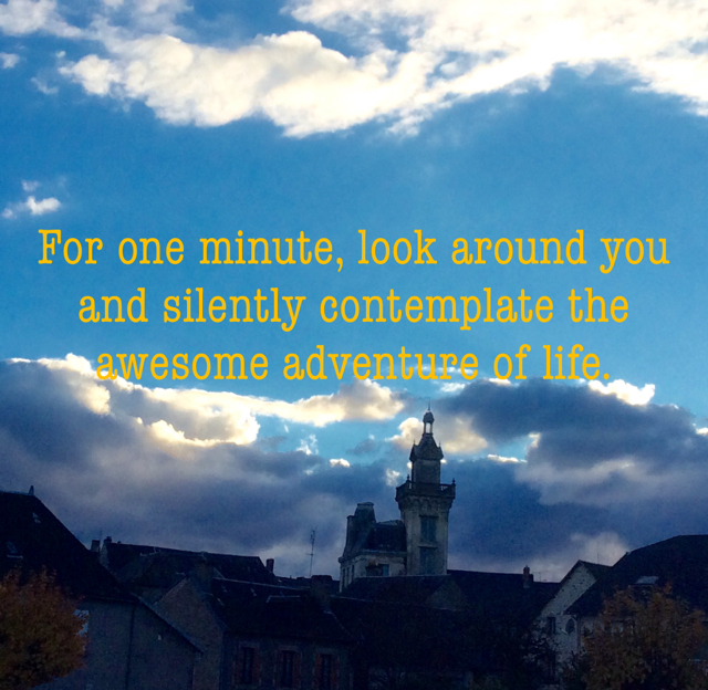 For one minute, look around you and silently contemplate the awesome adventure of life.