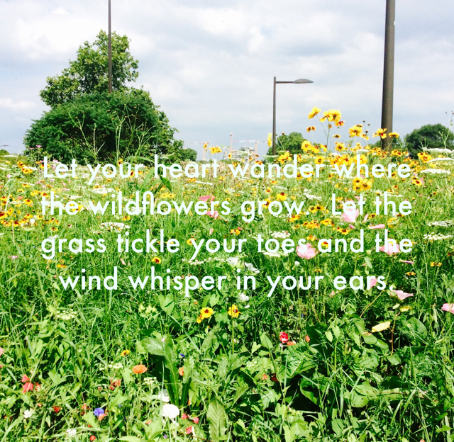 Let your heart wander where the wildflowers grow.  Let the grass tickle your toes and the wind whisper in your ears.