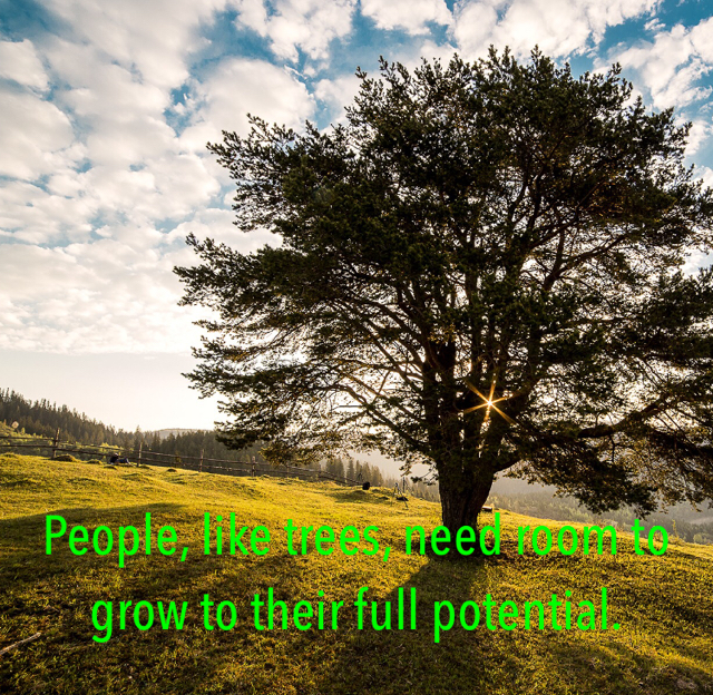 People, like trees, need room to grow to their full potential.