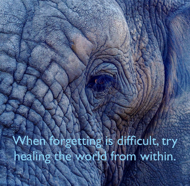 When forgetting is difficult, try healing the world from within.