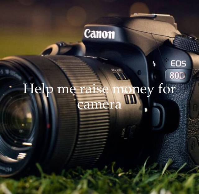 Help me raise money for camera