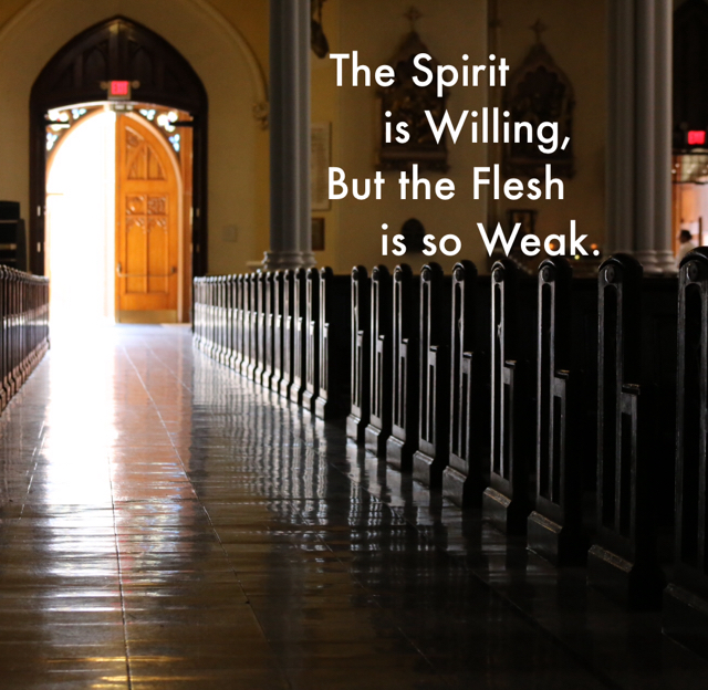 The Spirit                     is Willing,               But the Flesh                       is so Weak.