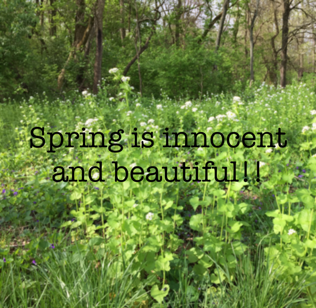 Spring is innocent and beautiful!!