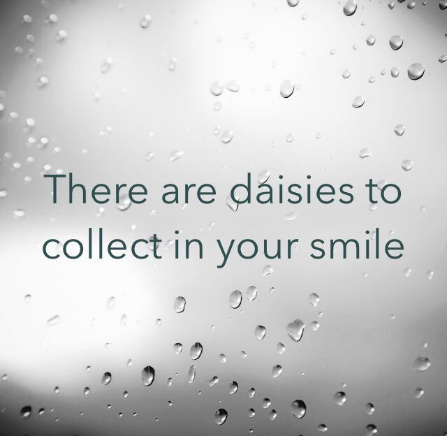 There are daisies to collect in your smile