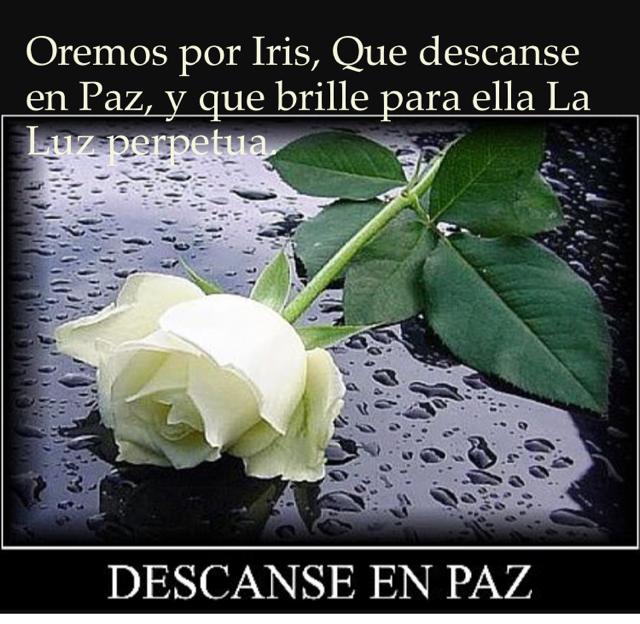 Oremos por Iris, Que descanse en Paz, y que brille para ella La Luz perpetua.