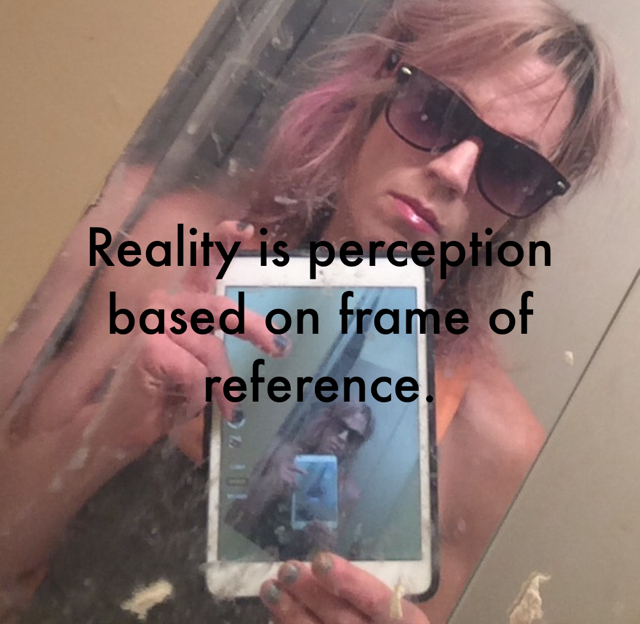 Reality is perception based on frame of reference.