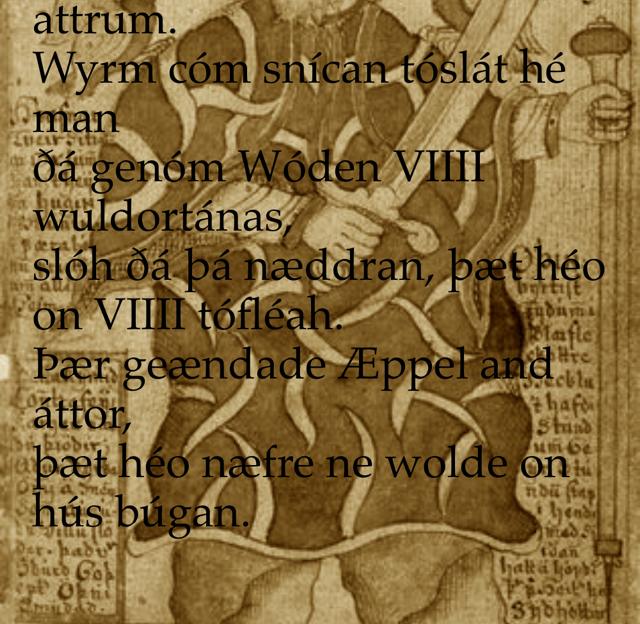 VII Þas VIIII magon wið nygon attrum. Wyrm cóm snícan tóslát hé man ðá genóm Wóden VIIII wuldortánas, slóh ðá þá næddran, þæt héo on VIIII tófléah. Þær geændade Æppel and áttor, þæt héo næfre ne wolde on hús búgan.
