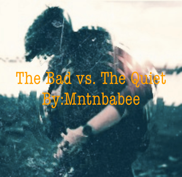 The Bad vs. The Quiet By:Mntnbabee