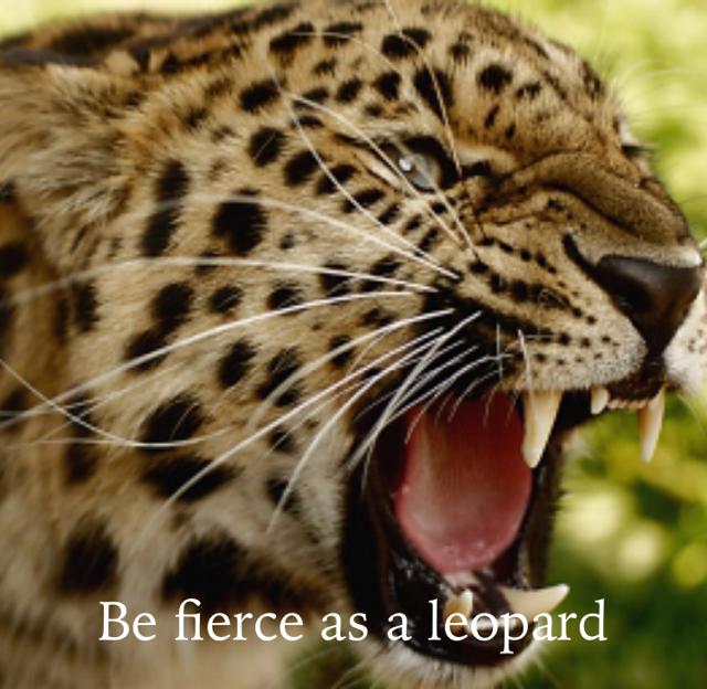 Be fierce as a leopard