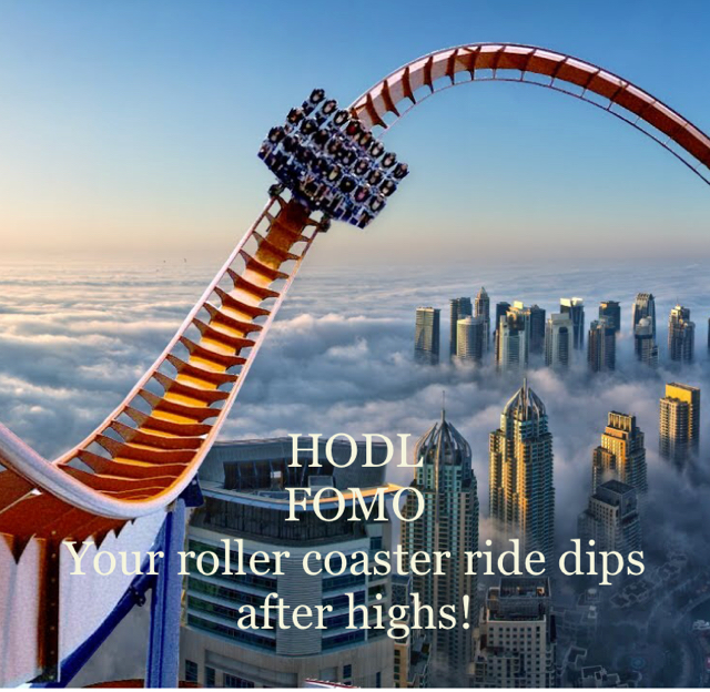 HODL FOMO Your roller coaster ride dips after highs!