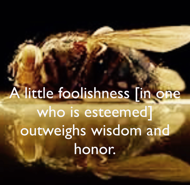 A little foolishness [in one who is esteemed] outweighs wisdom and honor.