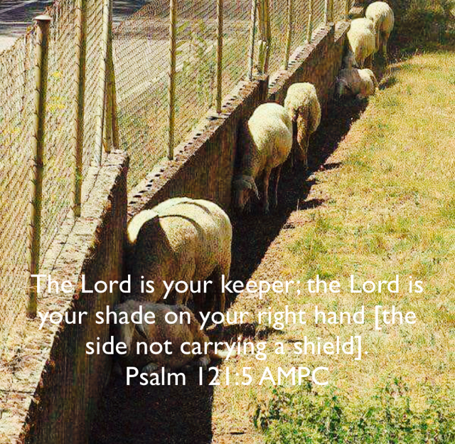 The Lord is your keeper; the Lord is your shade on your right hand [the side not carrying a shield]. Psalm 121:5 AMPC