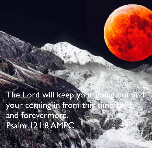 The Lord will keep your going out and your coming in from this time forth and forevermore. Psalm 121:8 AMPC
