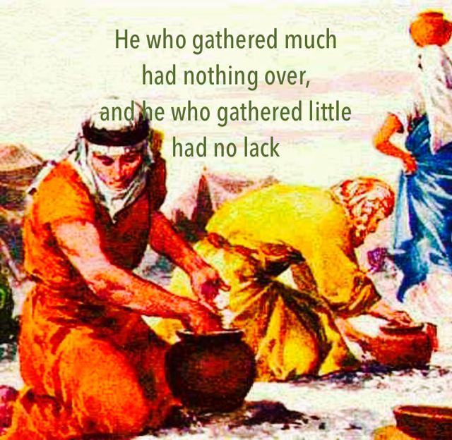 He who gathered much  had nothing over,  and he who gathered little  had no lack