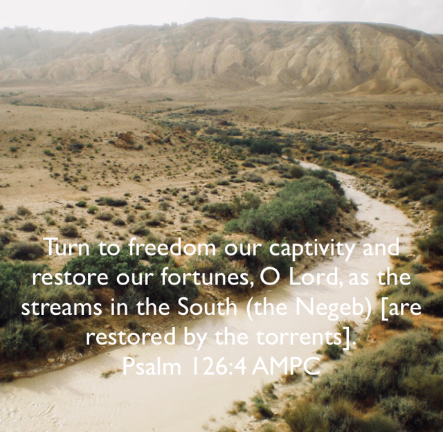 Turn to freedom our captivity and restore our fortunes, O Lord, as the streams in the South (the Negeb) [are restored by the torrents]. Psalm 126:4 AMPC