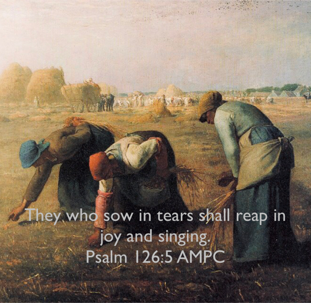 They who sow in tears shall reap in joy and singing. Psalm 126:5 AMPC