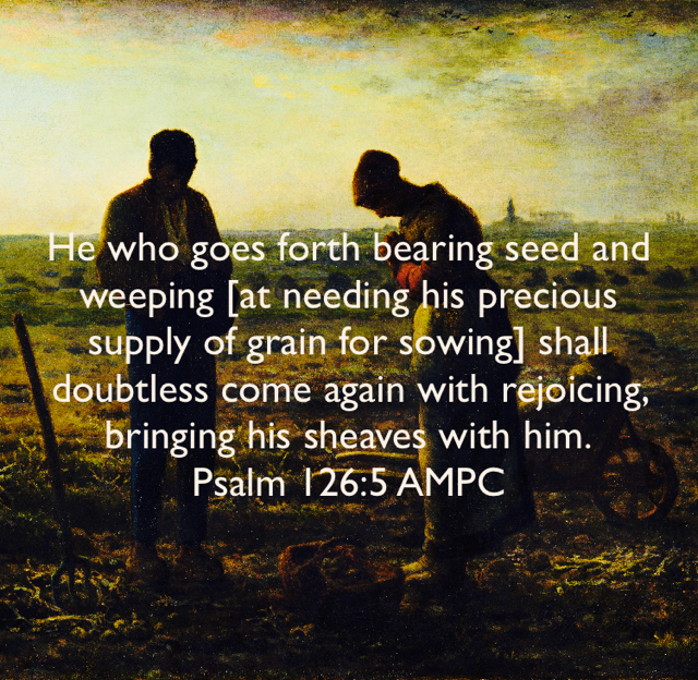 He who goes forth bearing seed and weeping [at needing his precious supply of grain for sowing] shall doubtless come again with rejoicing, bringing his sheaves with him. Psalm 126:5 AMPC