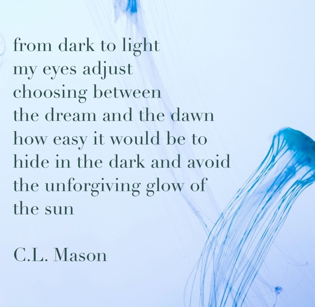 from dark to light  my eyes adjust  choosing between  the dream and the dawn how easy it would be to hide in the dark and avoid the unforgiving glow of  the sun C.L. Mason
