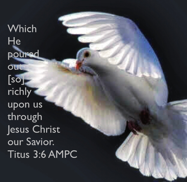 Which  He  poured  out  [so]  richly  upon us  through  Jesus Christ  our Savior. Titus 3:6 AMPC