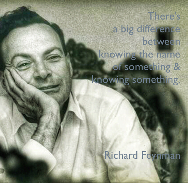 There's  a big difference  between  knowing the name  of something &  knowing something. Richard Feynman