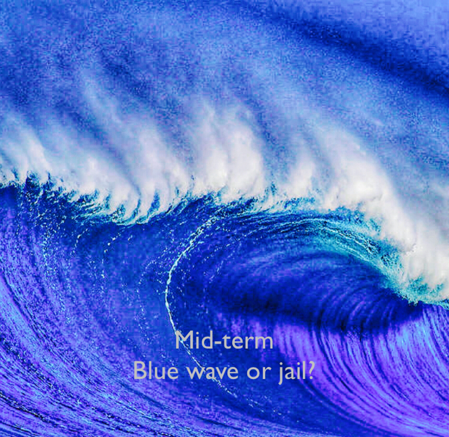 Mid-term Blue wave or jail?