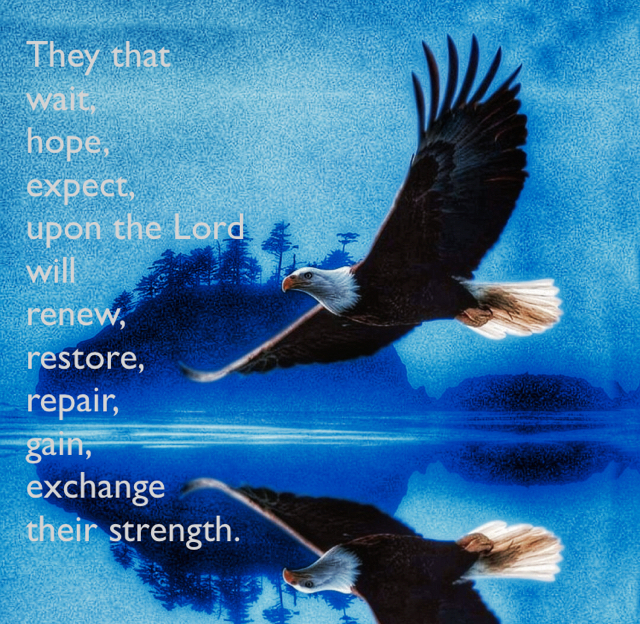 They that  wait,    hope, expect,  upon the Lord  will  renew,  restore, repair,  gain, exchange  their strength.