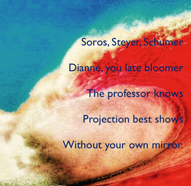 Soros, Steyer, Schumer Dianne, you late bloomer The professor knows Projection best shows Without your own mirror.