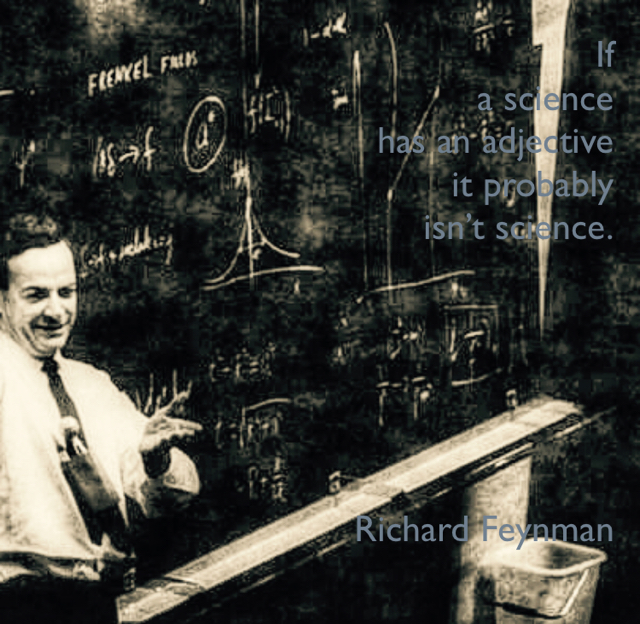 If  a science  has an adjective  it probably  isn't science. Richard Feynman