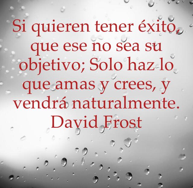 Si quieren tener éxito, que ese no sea su objetivo; Solo haz lo que amas y crees, y vendrá naturalmente. David Frost