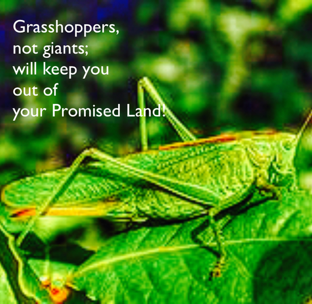 Grasshoppers,  not giants;  will keep you  out of  your Promised Land!