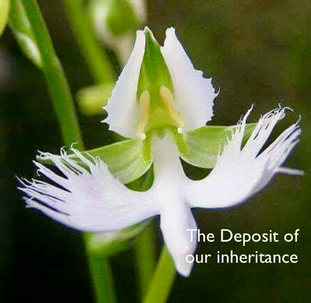 The Deposit of  our inheritance