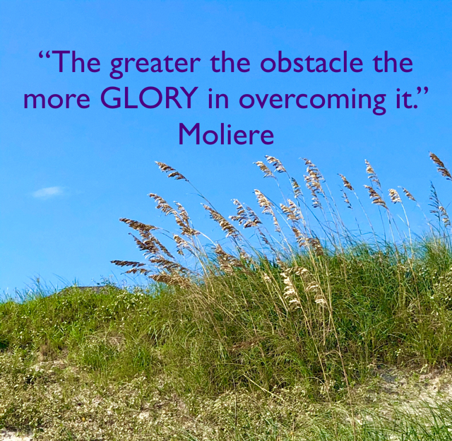 """The greater the obstacle the more GLORY in overcoming it."" Moliere"